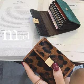 BEAUTY&YOUTH UNITED ARROWS - Leopard Card Wallet/レオパードカードウォレット