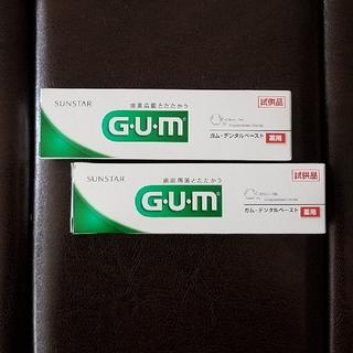 薬用GUM・デンタルペースト〔22g×2〕