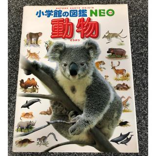 小学館 - 動物図鑑 NEO