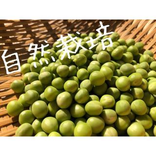 「自然栽培」グリーンピース むきみ 約300g(野菜)
