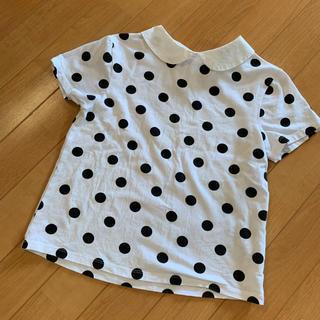 ZARA KIDS - ZARA 丸襟 ドット Tシャツ 134