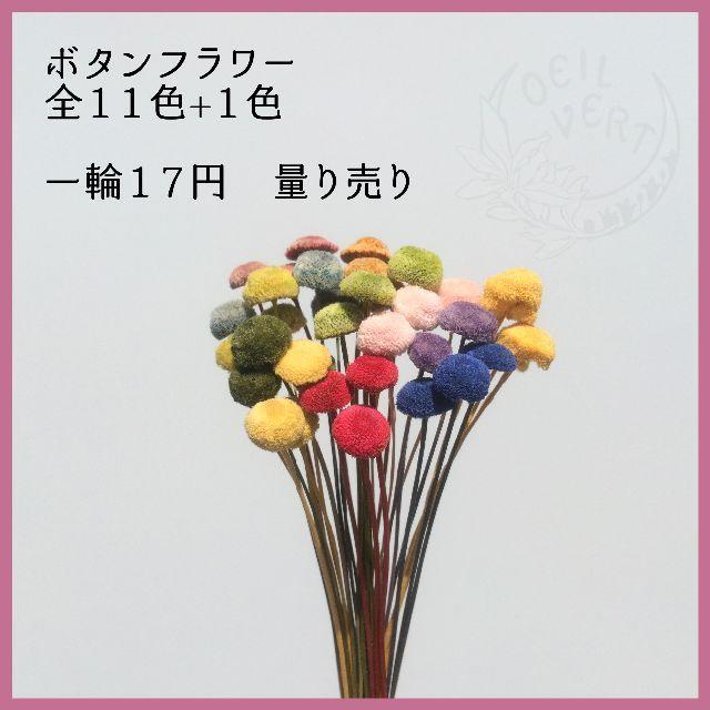 ボタンフラワー 全11色+1色 量り売り ハンドメイドのフラワー/ガーデン(ドライフラワー)の商品写真