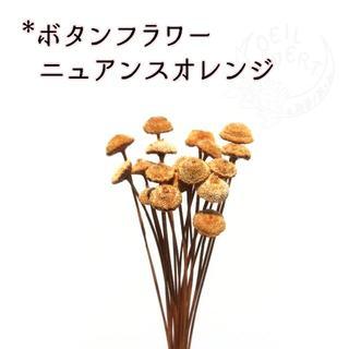 ボタンフラワー ニュアンスオレンジ 10本(ドライフラワー)