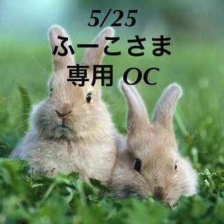 ★5/25★ふーこさま専用ページ OC❶