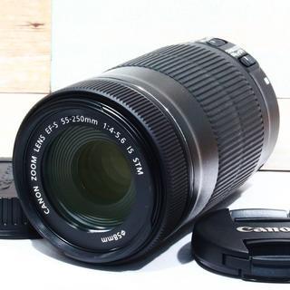 ★STMモーター付★キャノン Canon EF-S 55-250mm STM