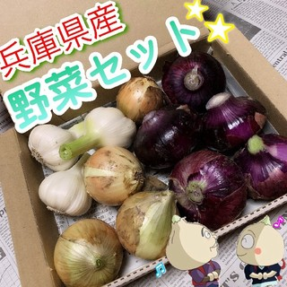 兵庫県産 無農薬・有機栽培★玉ねぎ&生にんにくセット