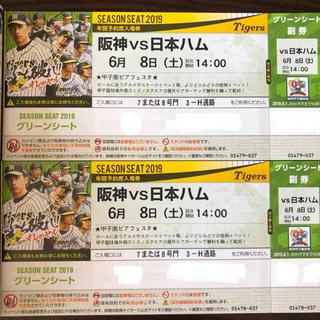 ハンシンタイガース(阪神タイガース)の6/8 交流戦 デーゲーム 甲子園グリーンシート(野球)