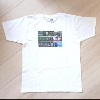 北海道日本ハムファイターズ - 新品✨日本ハムファイターズ Tシャツ 半袖