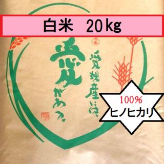 お米 H30 愛媛県産ヒノヒカリ 白米 20㎏