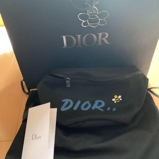 Dior - Dior × KAWS ボディーバッグ