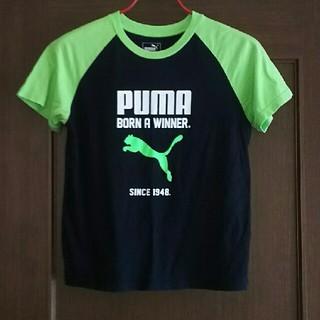PUMA - 【プーマ】半袖Tシャツ 160㎝