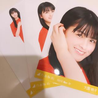 乃木坂46 - 大園桃子 コンプ