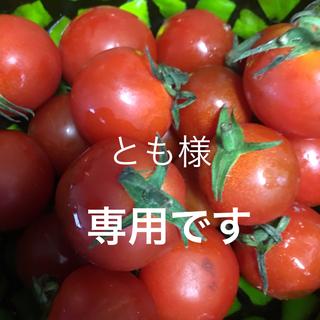 エスプリーク(ESPRIQUE)のエスプリーク 化粧下地EX(化粧下地)