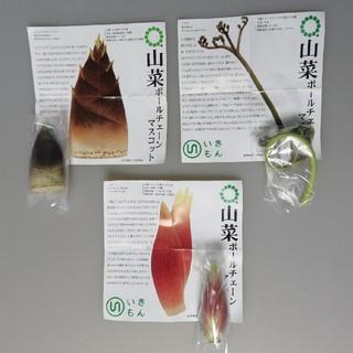 3種セット 山菜 ネイチャーテクニカラーmonoplus  ガチャ いきもん