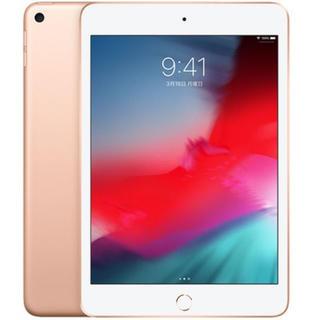 アイパッド(iPad)のiPad mini5 Wi-Fi 64GB  MUQY2J/A ゴールド(タブレット)