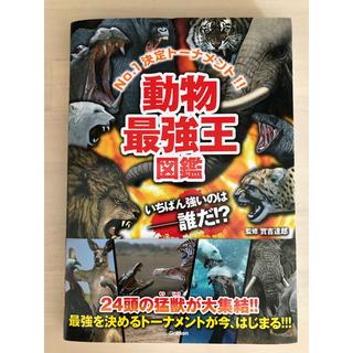 「動物最強王図鑑 No.1決定トーナメント!!」