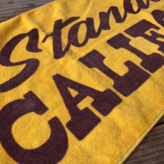 スタンダードカリフォルニア(STANDARD CALIFORNIA)のスタンダードカリフォルニア グリーンルーム 限定 タオル(その他)