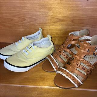 ブリーズ(BREEZE)の女の子 靴&サンダルセット 21cm ブリーズ(スニーカー)