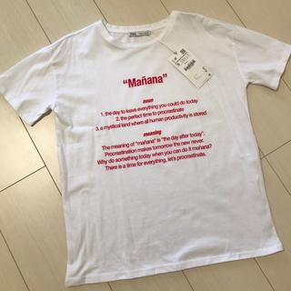 ZARA - 新品 今期ZARA プリントTシャツ 半袖 白