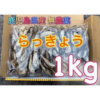 鹿児島県産 無農薬 らっきょう 1kg