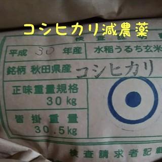 コシヒカリ玄米24.5キロ減農薬