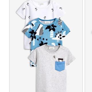 ネクスト(NEXT)の【新品】NEXT Tシャツ 3枚セット 12-18m(Tシャツ)