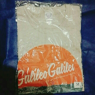 【ねこ様】Galileo Galilei Tシャツ、トレーナー(グレー)セット(ミュージシャン)