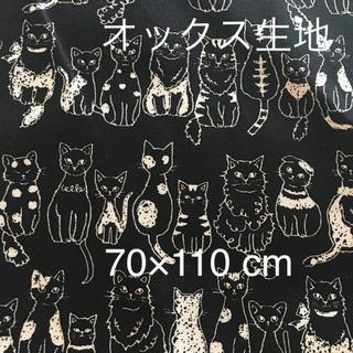 生地 布🐹KOKKA オックス生地 猫ちゃん柄黒 70×110 cm