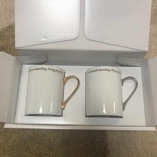 ヨンドシー(4℃)の4°C 新品未使用ペアカップ(グラス/カップ)