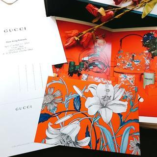 グッチ(Gucci)のGUCCI ノベルティー post card 《red》(切手/官製はがき)