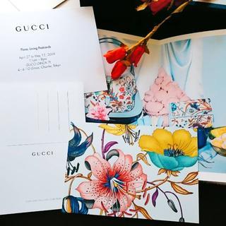 グッチ(Gucci)のGUCCI ノベルティー post card 《blue》(切手/官製はがき)