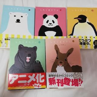 小学館 - マンガ 【しろくまカフェ】 1巻~5巻 帯付き全巻セット