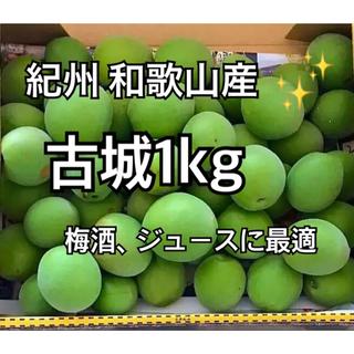 和歌山産 古城 青梅 家庭用 1kg