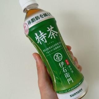 訳あり サントリー 特茶 500ml(特保)2箱 48本(茶)