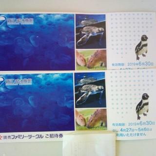 新江ノ島水族館 ペアチケット 招待券