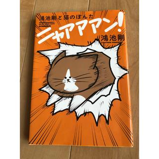 カドカワショテン(角川書店)のニャアアアン!  鴻池剛と猫のぽんた(その他)