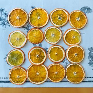 ドライオレンジ 16枚(ドライフラワー)