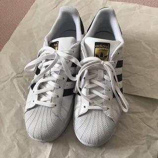 adidas - アディダス スーパースター白 26センチ