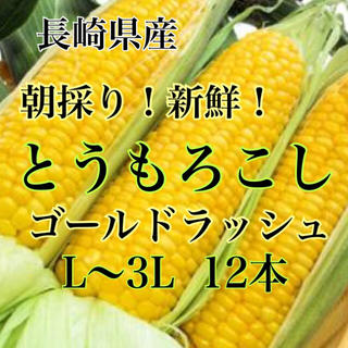 朝採りトウモロコシ L〜3L 12本 水曜日発送予定(野菜)