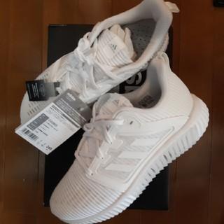 アディダス(adidas)の24.5cm アディダスCLIMACOOL vent W 白 レディース 新品(スニーカー)