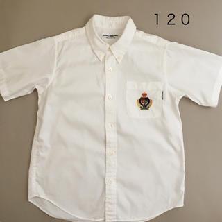 ミキハウス(mikihouse)のミキハウス 120 半袖 シャツ ボタンダウン  115-125 習い事等(ブラウス)