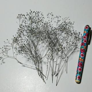 スーパーソフトミニカスミ草のシルバーにゴールドラメ付きの小分け(プリザーブドフラワー)