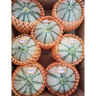 長崎県島原市産‼️赤肉マルセイユメロン‼️7玉(フルーツ)