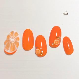 再販3[023]フルーツ/果物/くだもの/オレンジ/ビタミン/ワンカラー/夏