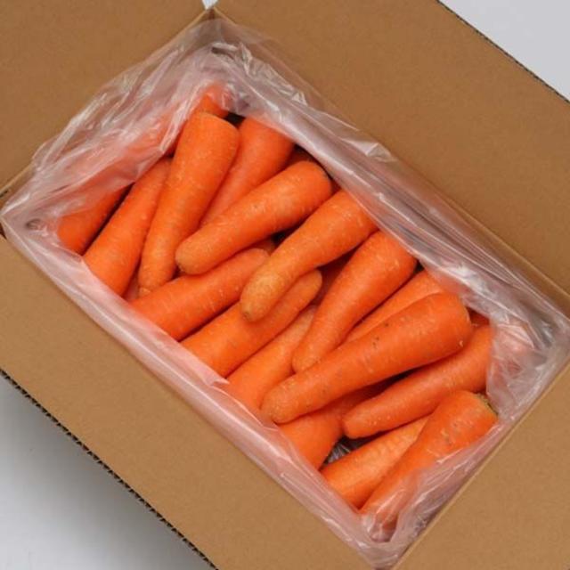 訳アリ 有機にんじん 5kg JAS認定 岡山県 無農薬オーガニック人参 食品/飲料/酒の食品(野菜)の商品写真