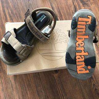 ティンバーランド(Timberland)のTimberland ティンバーランド キッズ 19〜20cm  サンダル 靴(サンダル)