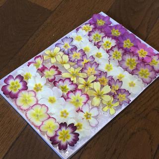 お花屋さんが作った季節のドライフラワー Box  c-2(ドライフラワー)