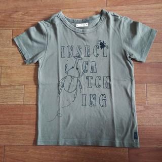 ベルメゾン(ベルメゾン)のカブトムシ Tシャツ 140(Tシャツ/カットソー)