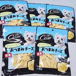 CASAR - シーザー カマンベール入り おつまみチーズ 5袋セット