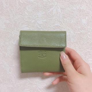 bd3dae379cf8 イルビゾンテ(IL BISONTE)の【未使用】イルビゾンテ 財布 限定カラー オリーブグリーン